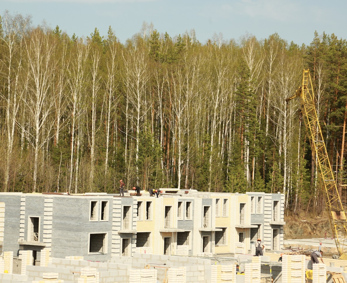 European Village development under construction with the tall woodland trees in the background