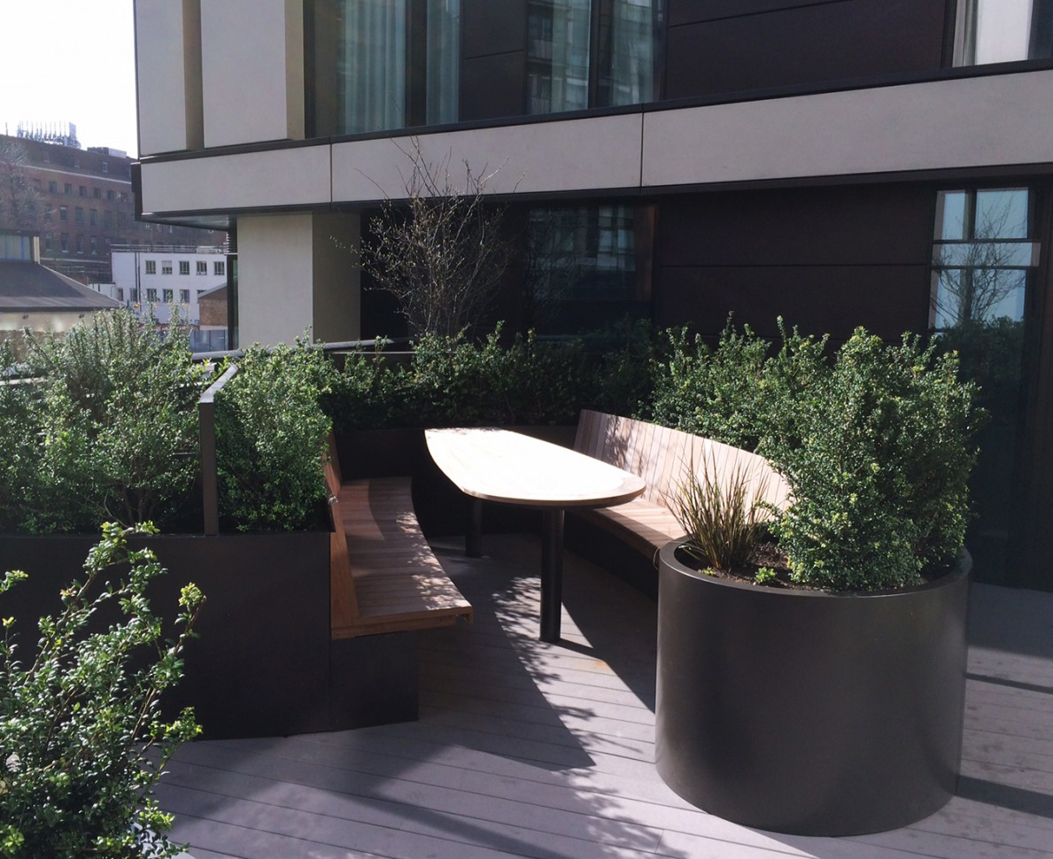 Bench seating area at Merchants Square with bushes and modern planters