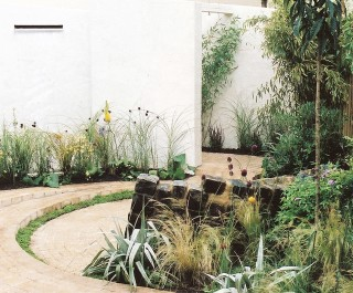 Family Town Garden stepped area with plants accentuated against the white walls