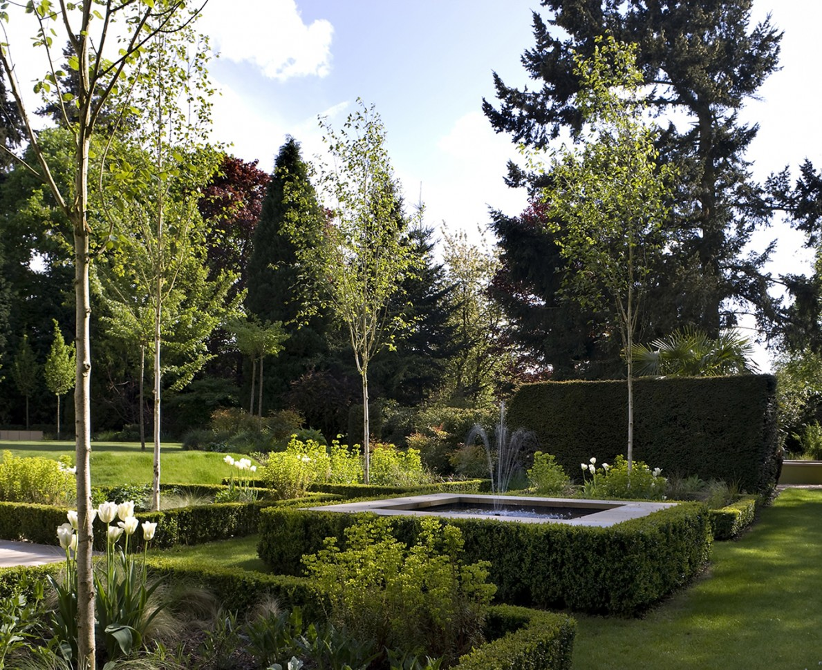 Modern Parterre with water feature, box hedging and young trees