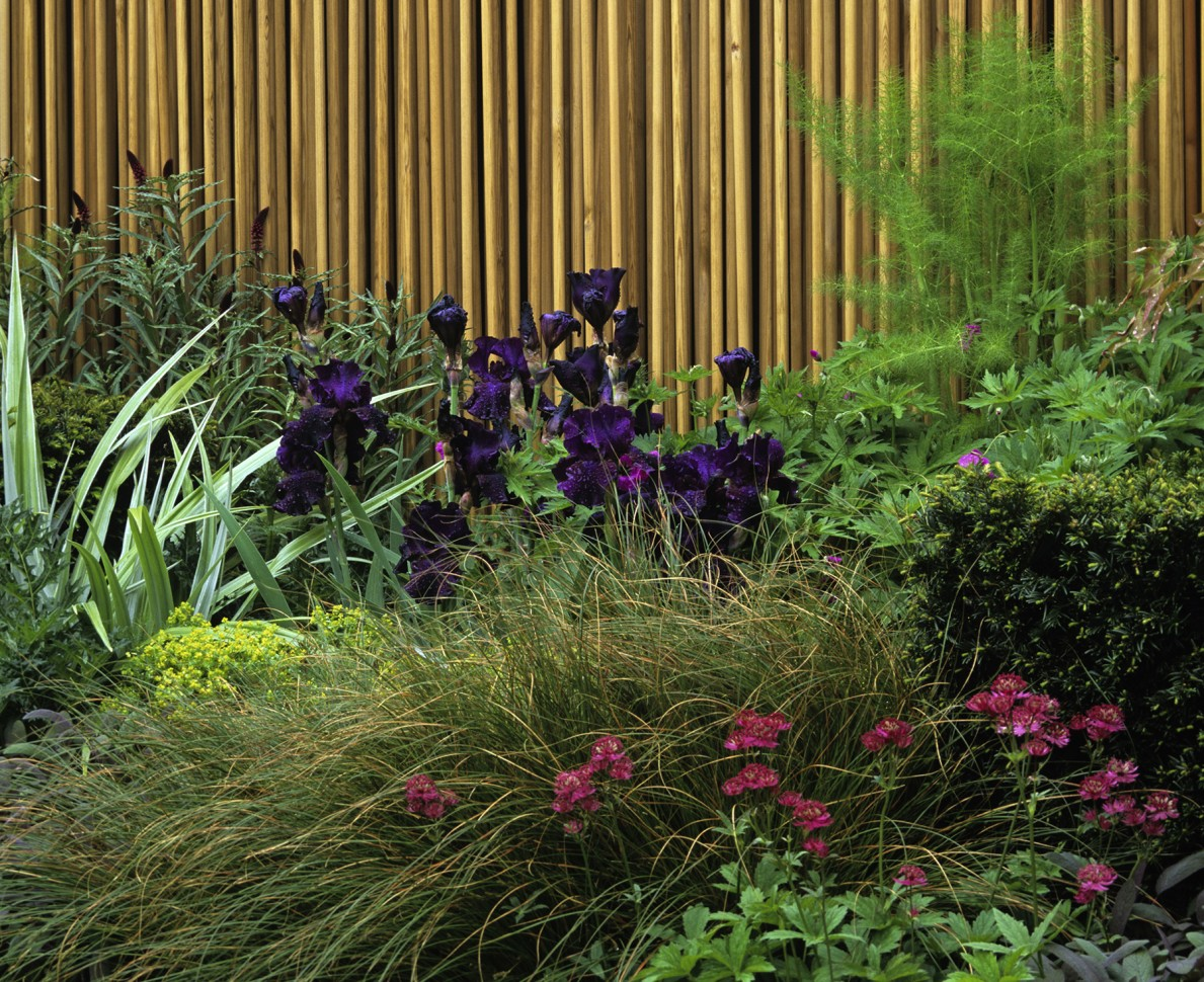 Prairie style planting and wooden dowling fence - RHS Chelsea Flower Show 2006