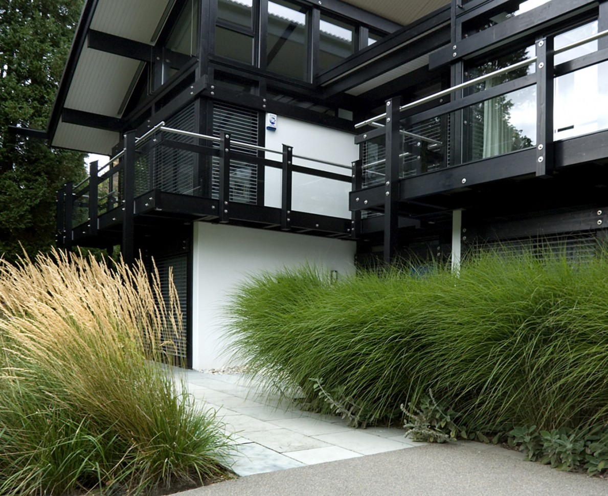 Huf House with border of grasses by the window
