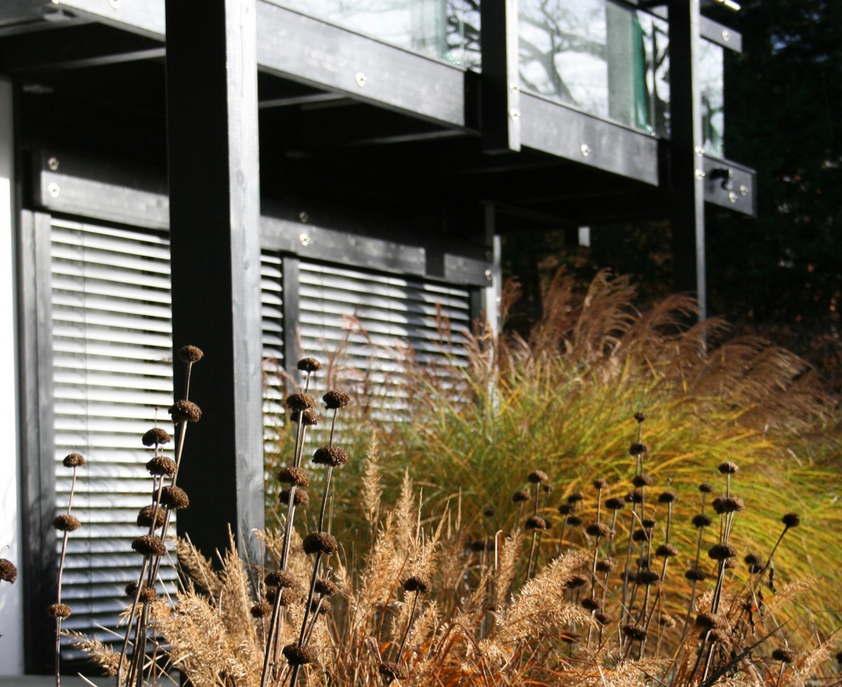Looking across a border of grasses to the Huf House
