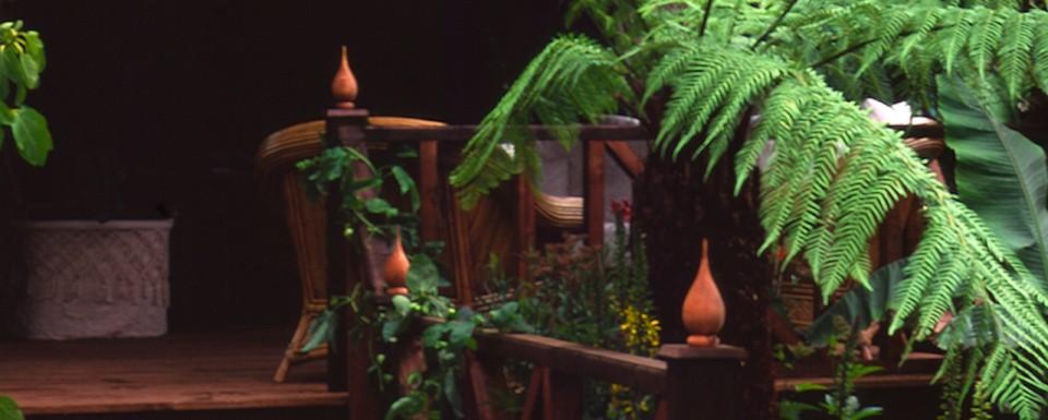 1998 RHS Hampton Court Flower Show Silver Gilt Medal winning garden with Australian ferns