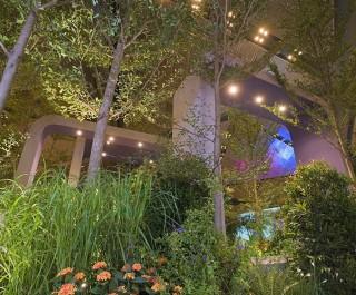 2008 Singapore Garden Festival