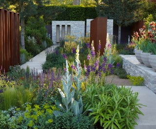 2010 RHS Chelsea Flower Show - double award winning garden