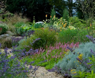2014 Society of Garden Designers Awards Planting award winner - beautiful flowers in pink, purple, orange and yellow