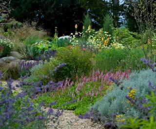 2014 Society of Garden Designers Awards 1