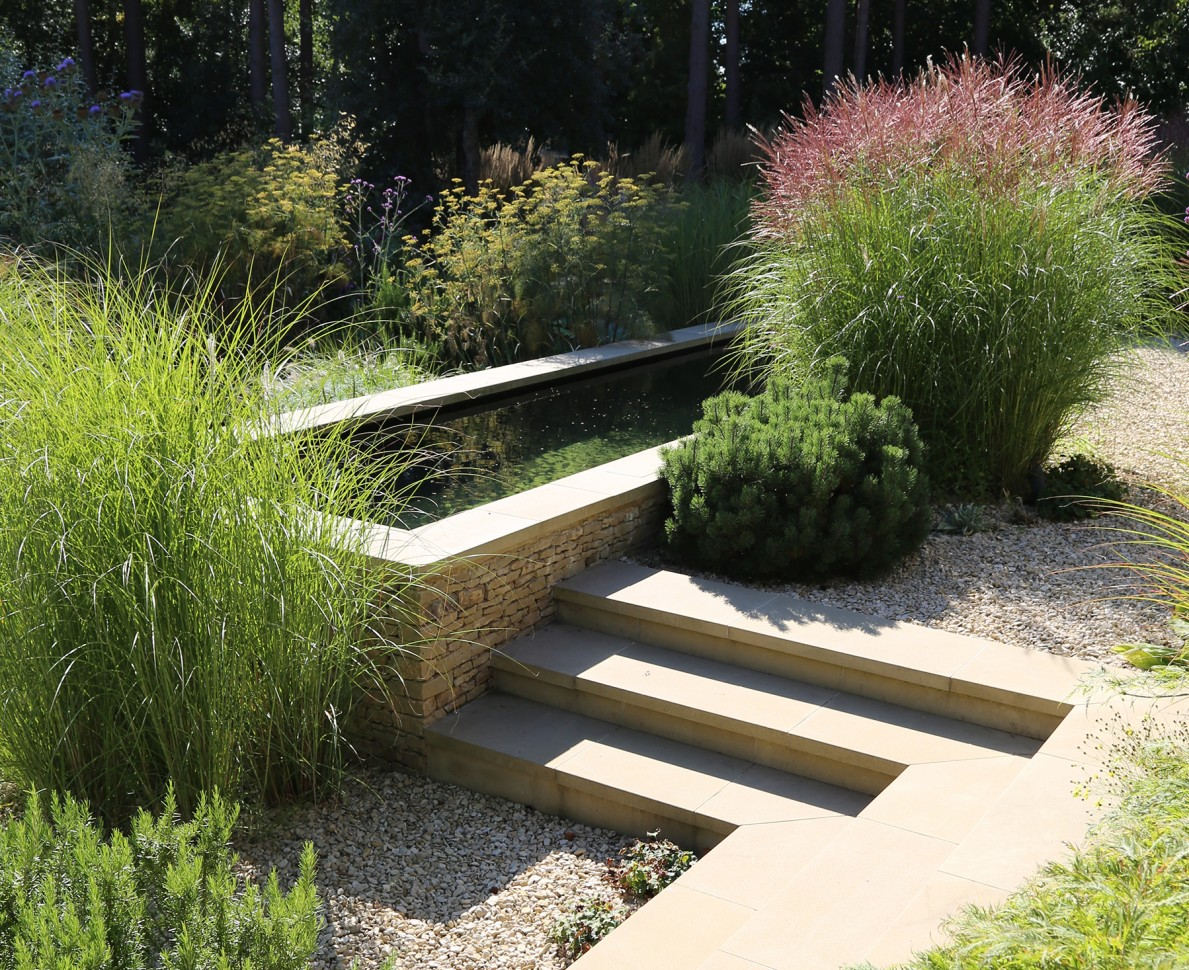 Steps by a water feature raised pond surrounded by greenery