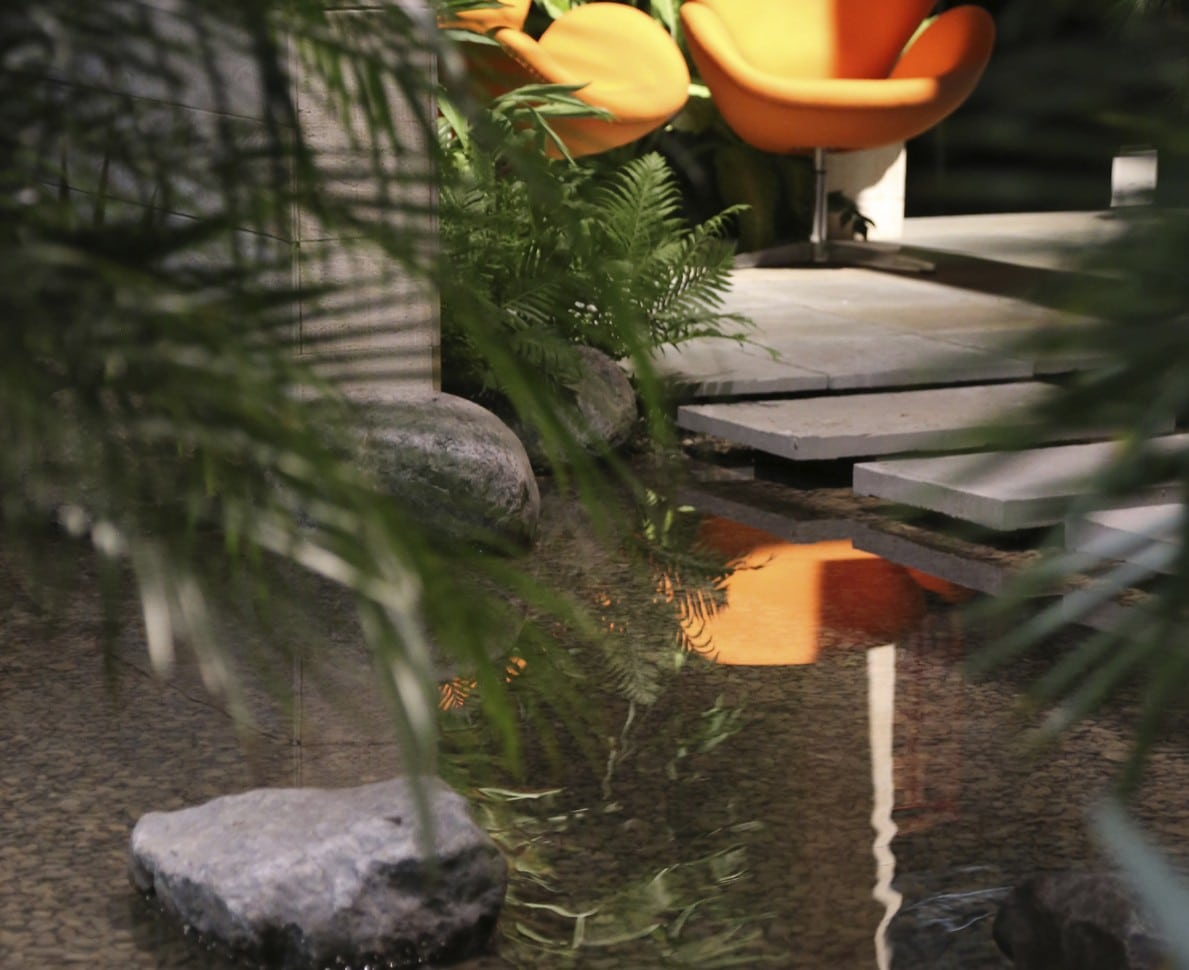 Looking through ferns to the water feature with seating beyond