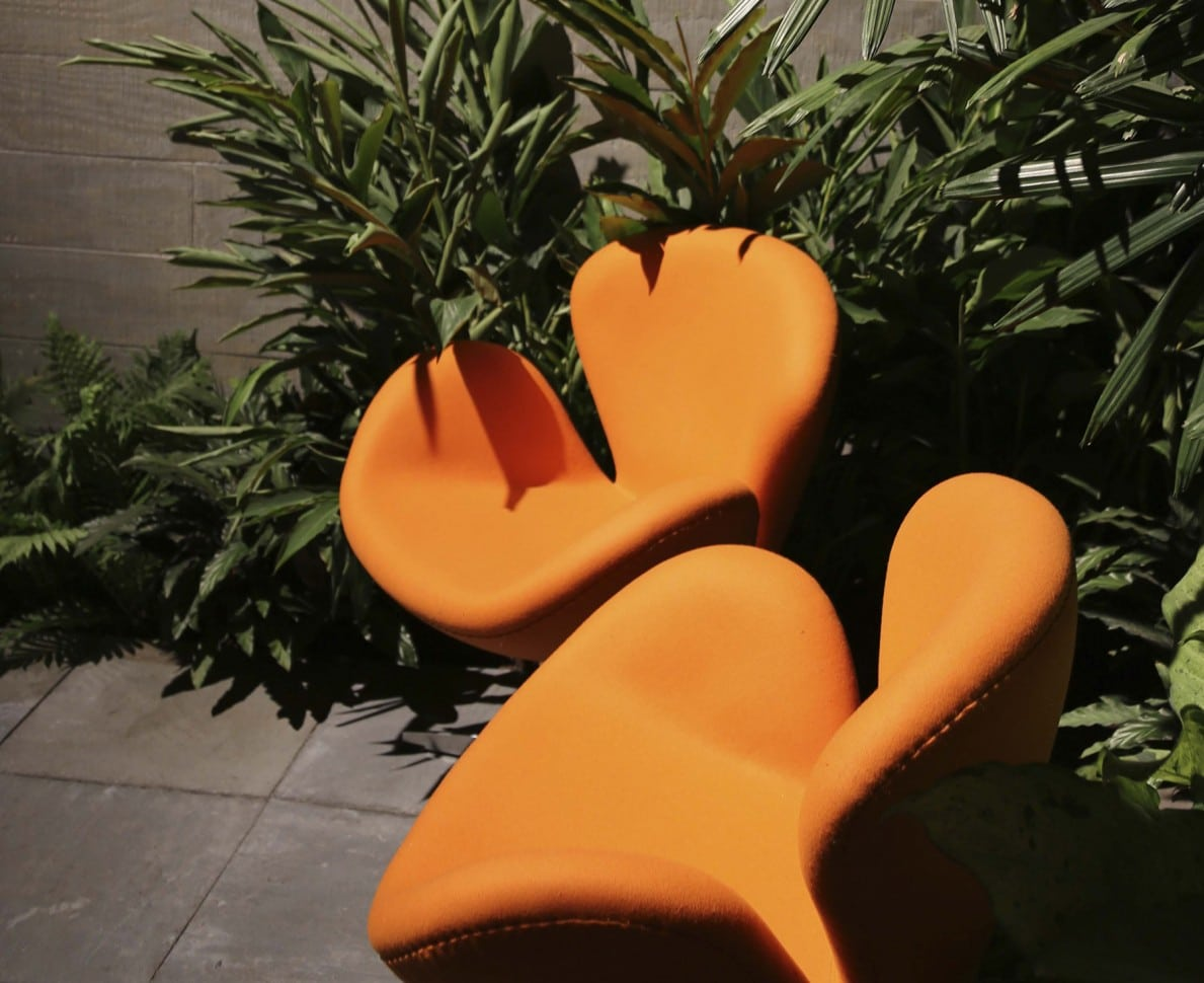 Two modern orange chairs surrounded by dark green foliage