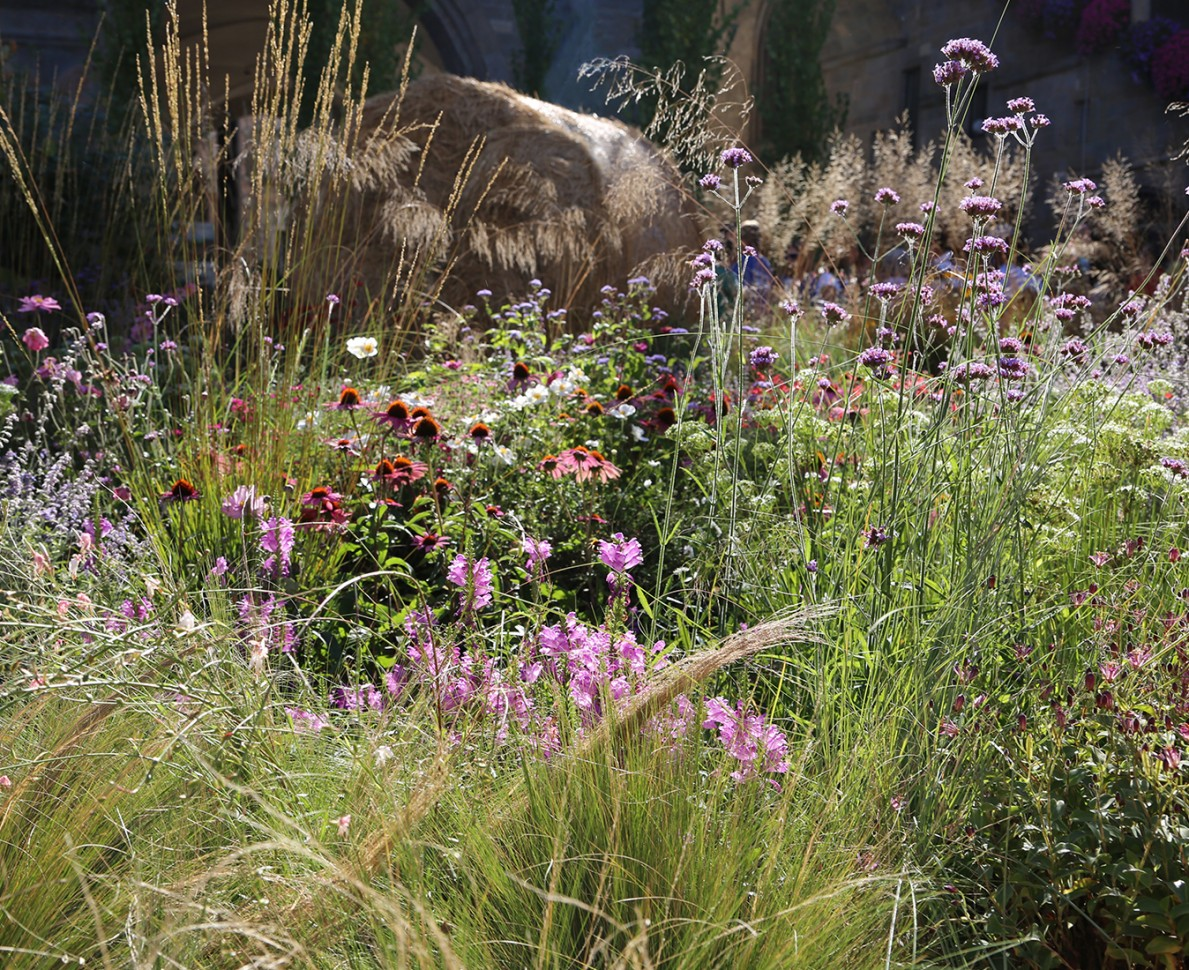 View through wildflower planting to a haybale