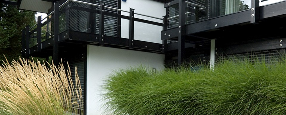 Monocrome Huf Haus With Modern Path And Green Pampas Grass