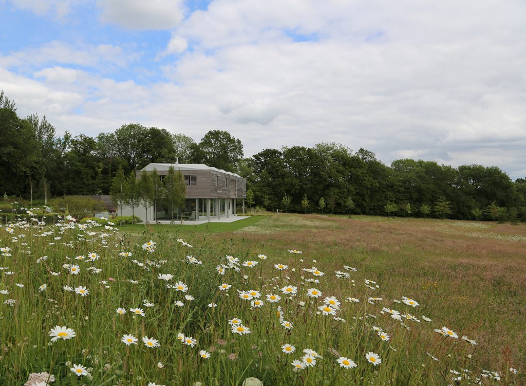 Sussex House - Andy Sturgeon Design - SGD Awards 2016