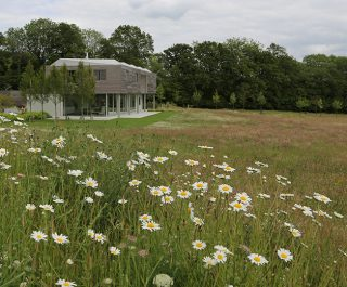 Panoramic View Of Modern Building Surrounded By Wildflower Fields And Backdrop Of Trees