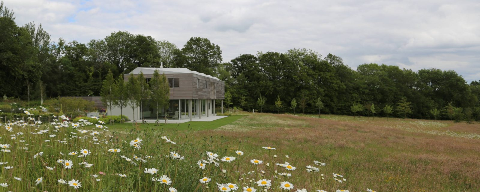 Wide Shot Of Sussex House With Background Trees and Field With Wildflowers