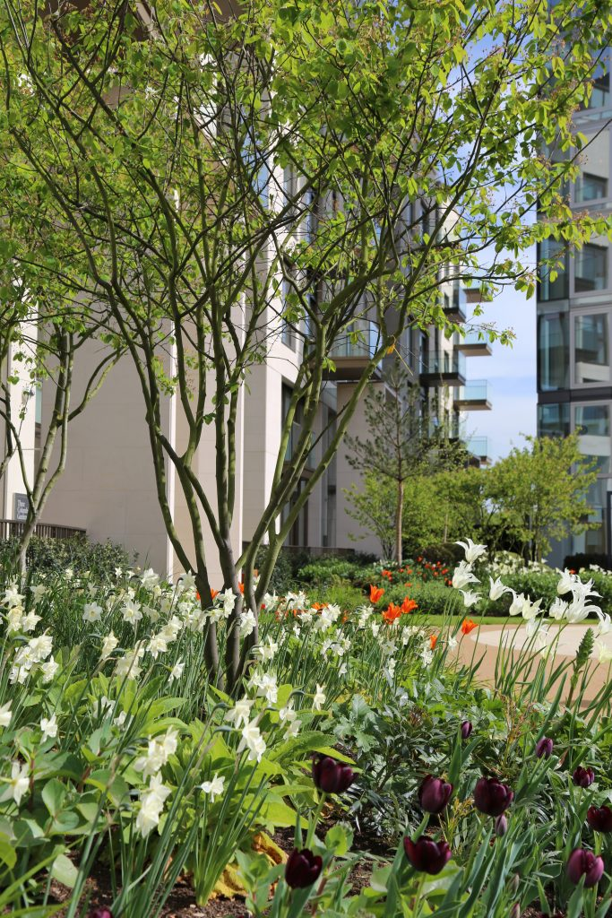 Lillie Square Andy Sturgeon Residential Development London