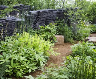 The award winning M&G RHS Chelsea Flower Show 2019 garden - planting and slate formations