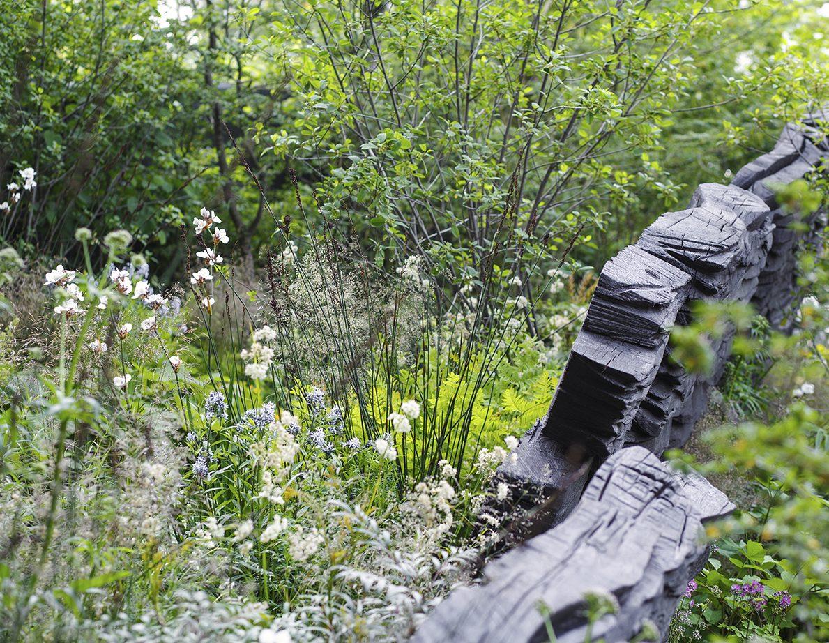 rhs chelsea flower show - show garden winner 2019